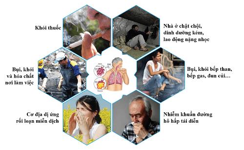 Nguyên nhân gây viêm phế quản